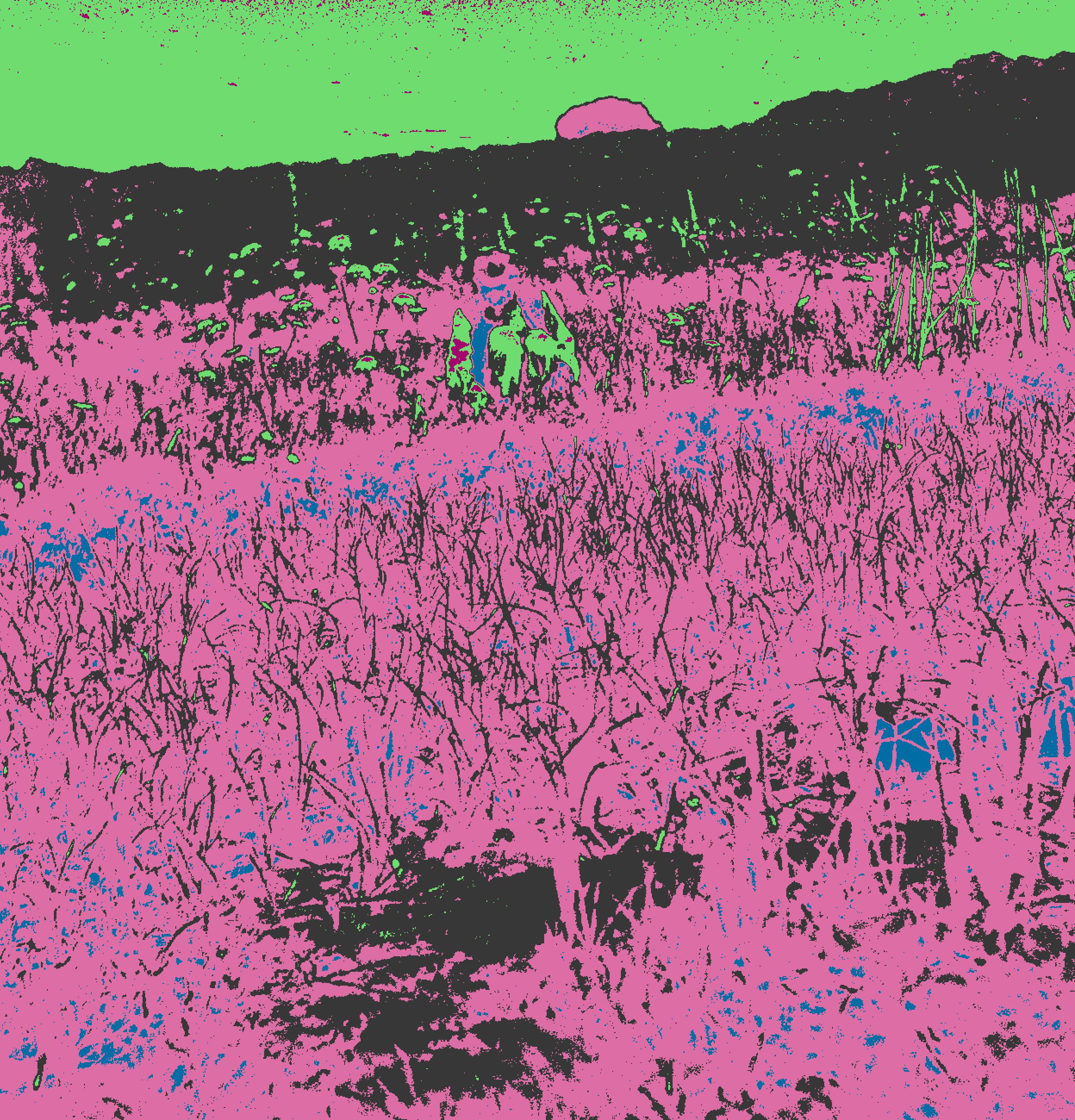 A strange field